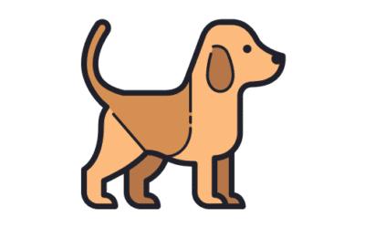 Cómo Calcular la Edad de Los Perros: ¿Cuántos años de humano tiene?