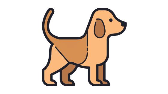 como se calcula la edad de los perros