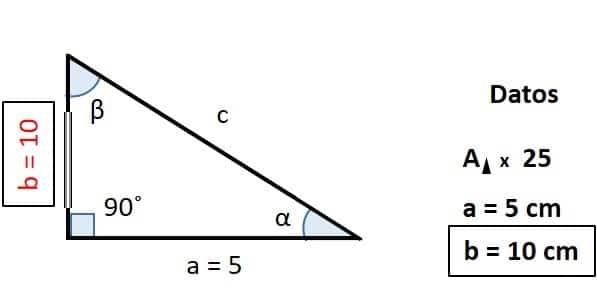 foto de triangulo rectangulo