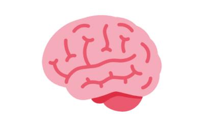 Cómo Afecta el Alcohol al Cerebro ¿Por qué nos Mareamos?