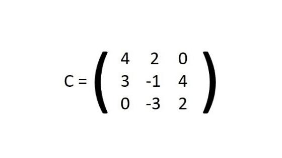 Cómo se Clasifican las Matrices