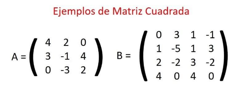 matriz cuadrada