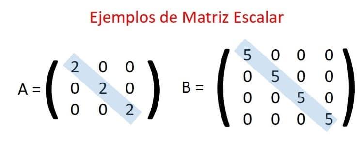 matriz escalar