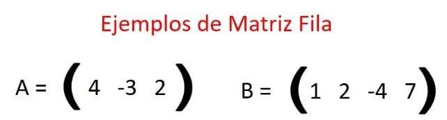 matriz fija