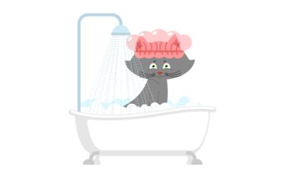 Cómo Bañar a un Gato Adulto