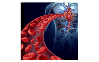 Cómo Oxigenar la Sangre: 4 Recomendaciones