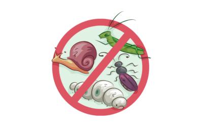 Cómo Proteger los Cultivos de las Plagas: 6 Tips Increíbles
