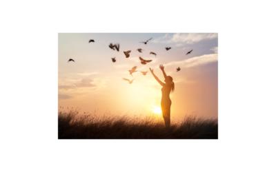 Cómo tener Paz Mental y Perdonar: 5 Ejercicios prácticos